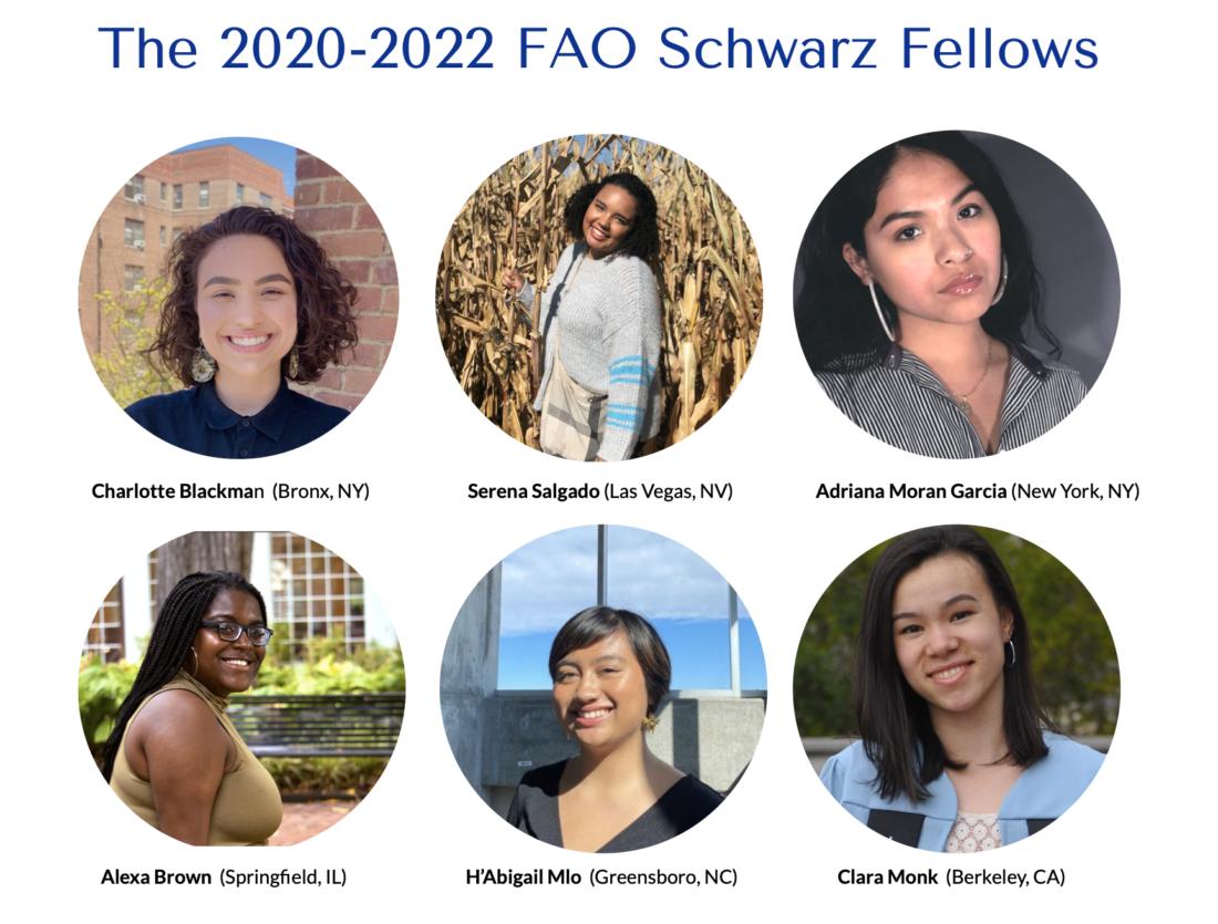 FAO Schwarz Fellows 2020