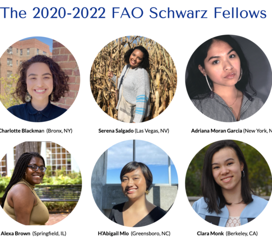 FAO Schwarz Fellows 2020